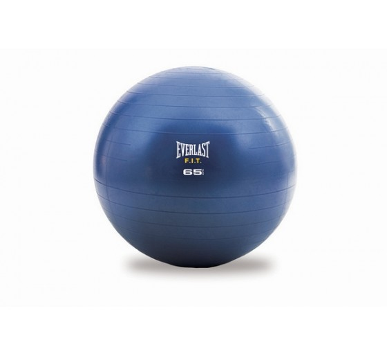 EVERLAST STABILITY BALL &...